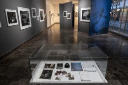 fot. Mariusz Forecki / Pix.House